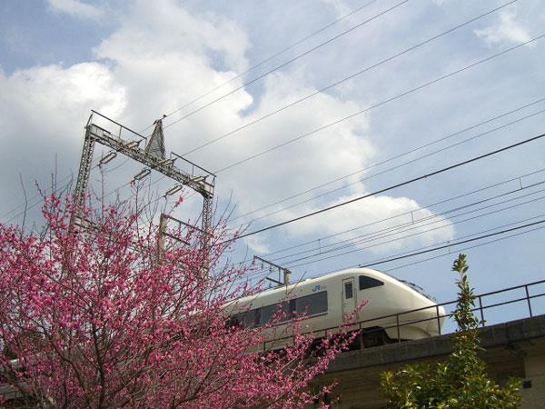 サンダーバードを使って金沢からUSJへ行く方法