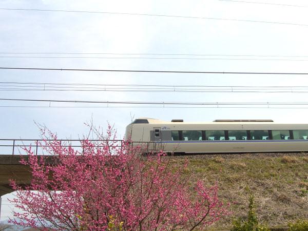 富山からUSJへ電車で行く方法