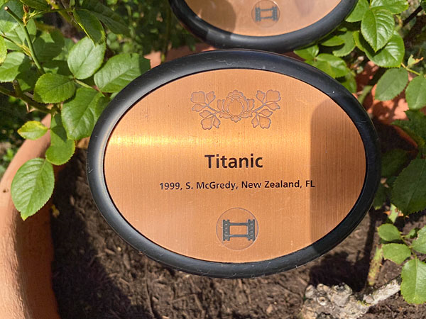 タイタニックのネームプレート