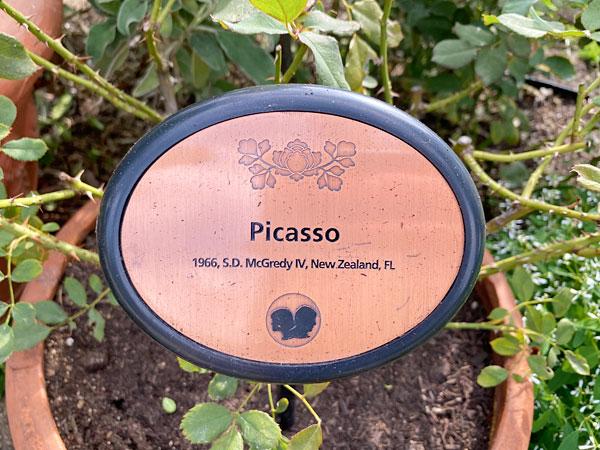ピカソのネームプレート