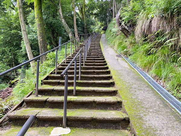 嵐山モンキーパークの石段