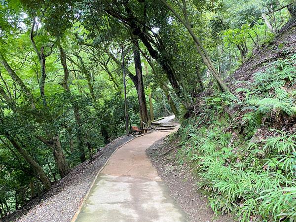 嵐山モンキーパークの山道