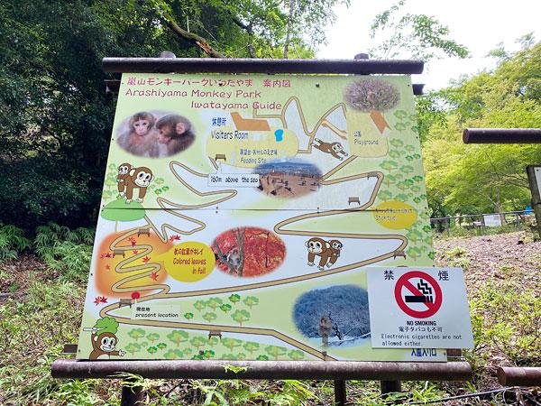 嵐山モンキーパークいわやま案内図