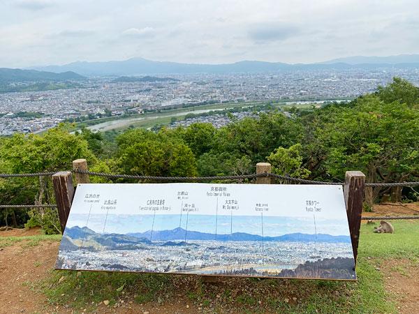 嵐山モンキーパーク山頂からの眺め