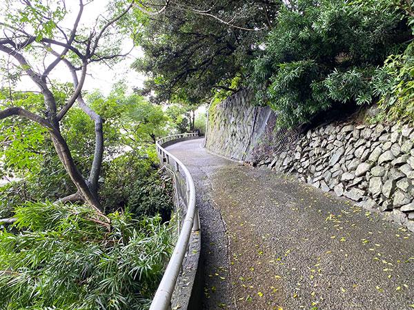 淡路島モンキーセンターのサル山に向かう坂