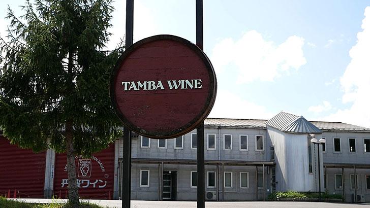 丹波ワインのワイナリー見学
