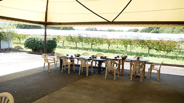 ブドウ畑を一望できる屋外テントのヴィンヤードグリル